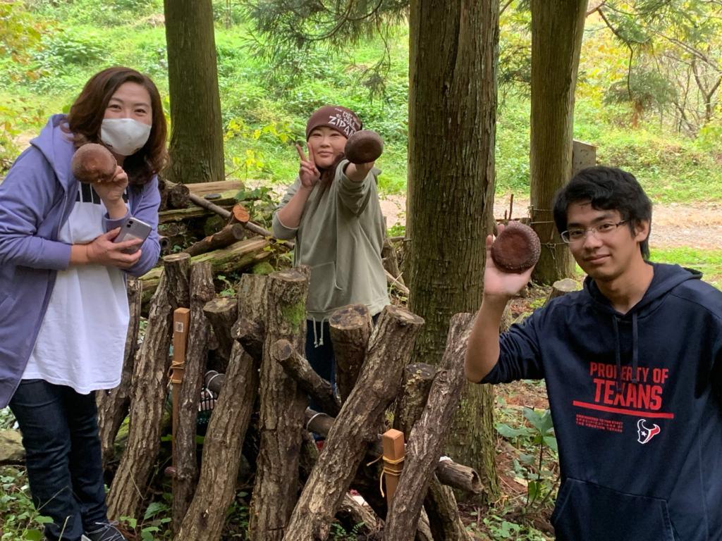 芦炭窯の原木椎茸収穫